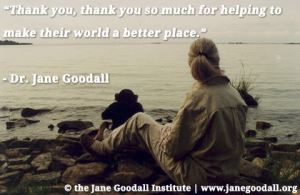 photo: Te Jane Goodall Institute